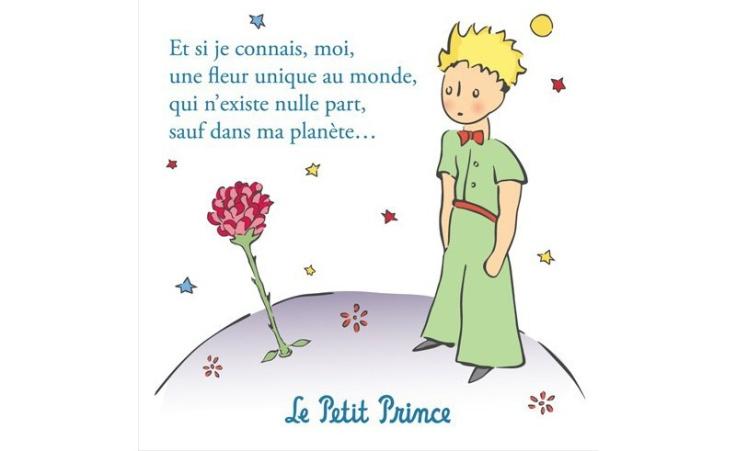 magnet-the-little-prince-la-rose-du-petit-prince